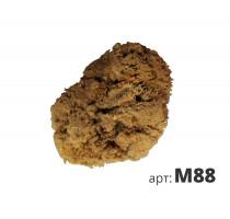 Натуральная губка морская M88
